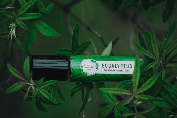 Eucalyptus CBD roll on